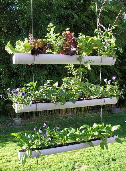 Idées Potager - Plantation