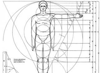 Dimensions et ergonomie